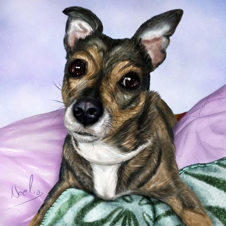 ilustración realista perro speedpaint