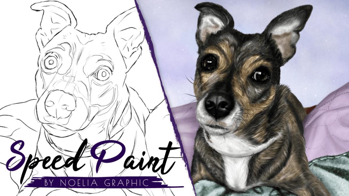 speedpaaint clipstudio -Dog digital drawing process