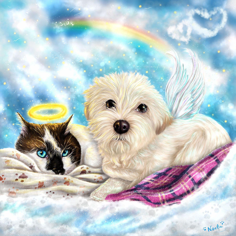 Dibujo realista de perro y gato juntos en el cielo