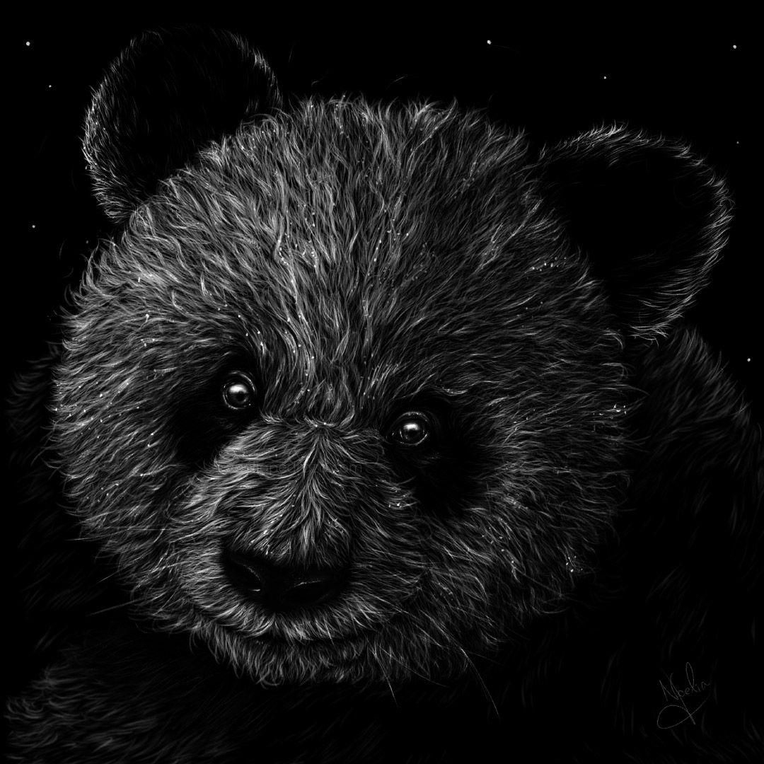 dibujo digital tiza oso panda